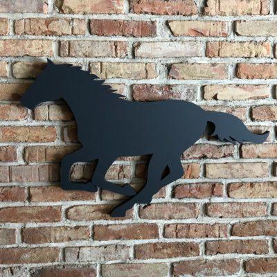 Nástěnka kůň cval