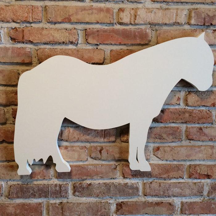 Nástěnka Pony