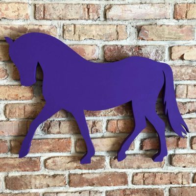 Nástěnka pony drezura