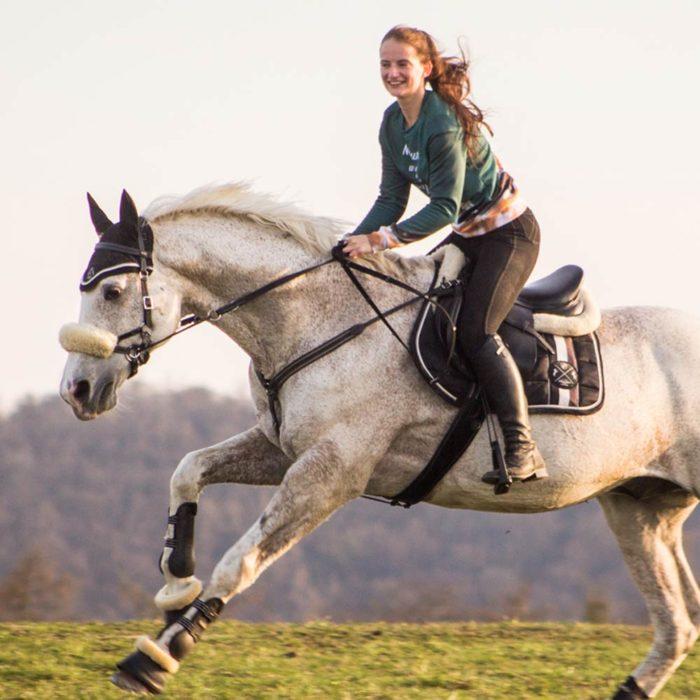 Equinns Saddle